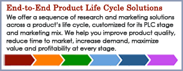 Tesla Strategies Product Life Cycle Solutions